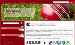 Screenshot of Bat'n'Bowl.com