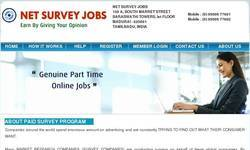 Screenshot of Net Survey Jobs