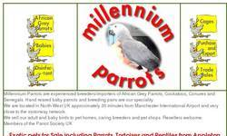 Screenshot of millennium parrots