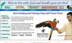 Screenshot of how to live, feed and handle your pet bird