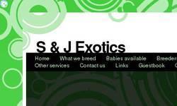 Screenshot of S&J Exotics Aviary