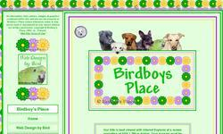 Screenshot of Birdboys Place