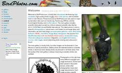 Screenshot of BirdPhotos.com
