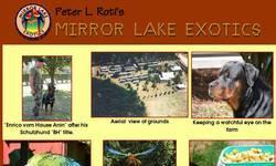 Screenshot of Mirror Lake Exotics