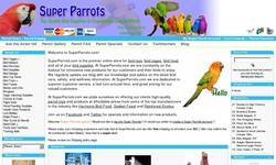 Screenshot of Super Parrots