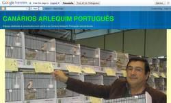 Screenshot of Can�rios Arlequim Portugu�s