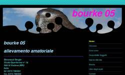 Screenshot of Allevamento amatoriale BOURKE05