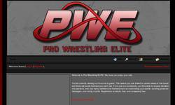 Screenshot of Pro Wrestling ELITE