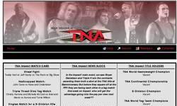 Screenshot of TNA Knockout