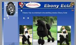 Screenshot of Ebony Eclat