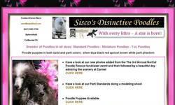 Screenshot of Sisco's Distinctive Poodles