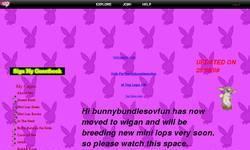 Screenshot of bunnybundlesovfun
