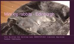 Screenshot of Mini lops and Lionheads Edinburgh