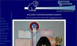 Screenshot of BarrowBunnies