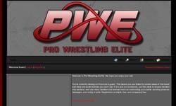 Screenshot of Pro Wrestling ELITE