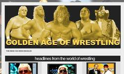 Screenshot of Golden Age Of Wrestling