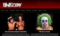 Screenshot of Universal Wrestling Federation