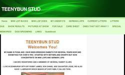 Screenshot of teenybun stud