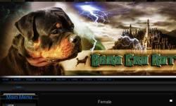 Screenshot of zara cro rott