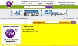 Screenshot of Established Business Websites for Sale