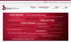 Screenshot of biznetsolutions