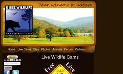 Screenshot of USeeWildlife.com