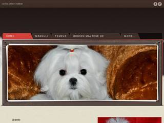 Screenshot of bichon maltese kennel