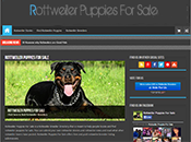 Screenshot of Rottweiler Puppies For Sale