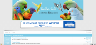 Screenshot of Feather Talk