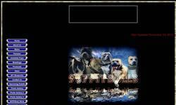 Screenshot of www.907pitbulls.com