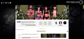 Screenshot of WWE Rebellion