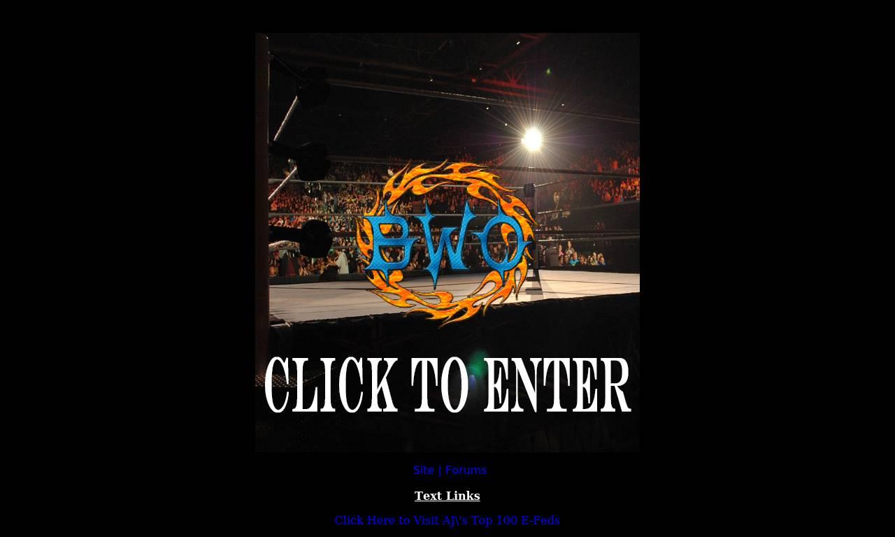 Screenshot of Best Wrestlers Organization