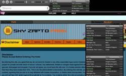 Screenshot of Sky Zapto Park