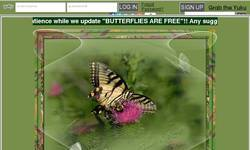 Screenshot of Butterflies Are Free