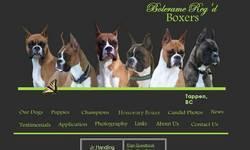 Screenshot of Bolerame Boxers Reg'd