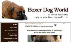 Screenshot of Boxer Dog World