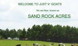 Screenshot of Just 4 Goats